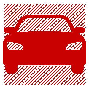 Car pest control